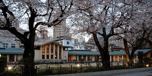 自由学園明日館 で夜桜を見ながらの建築談義