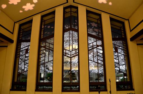 自由学園明日館の夜景と夜桜