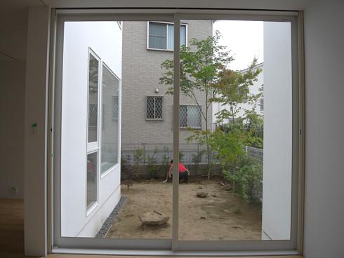 モミジが植えられた裏庭