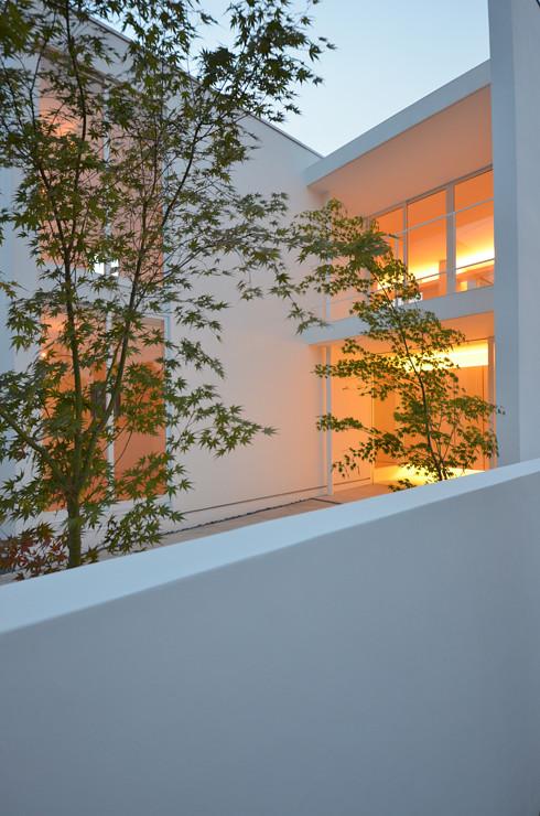 モミジ越しに見る玄関アプローチの夜景